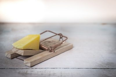 This is a picture of a mouse trap with some cheese for an article entitled 15 customer retention strategies that work for small businesses an article by Octopus Intelligence the providers of quality and trusted Competitive Intelligence.