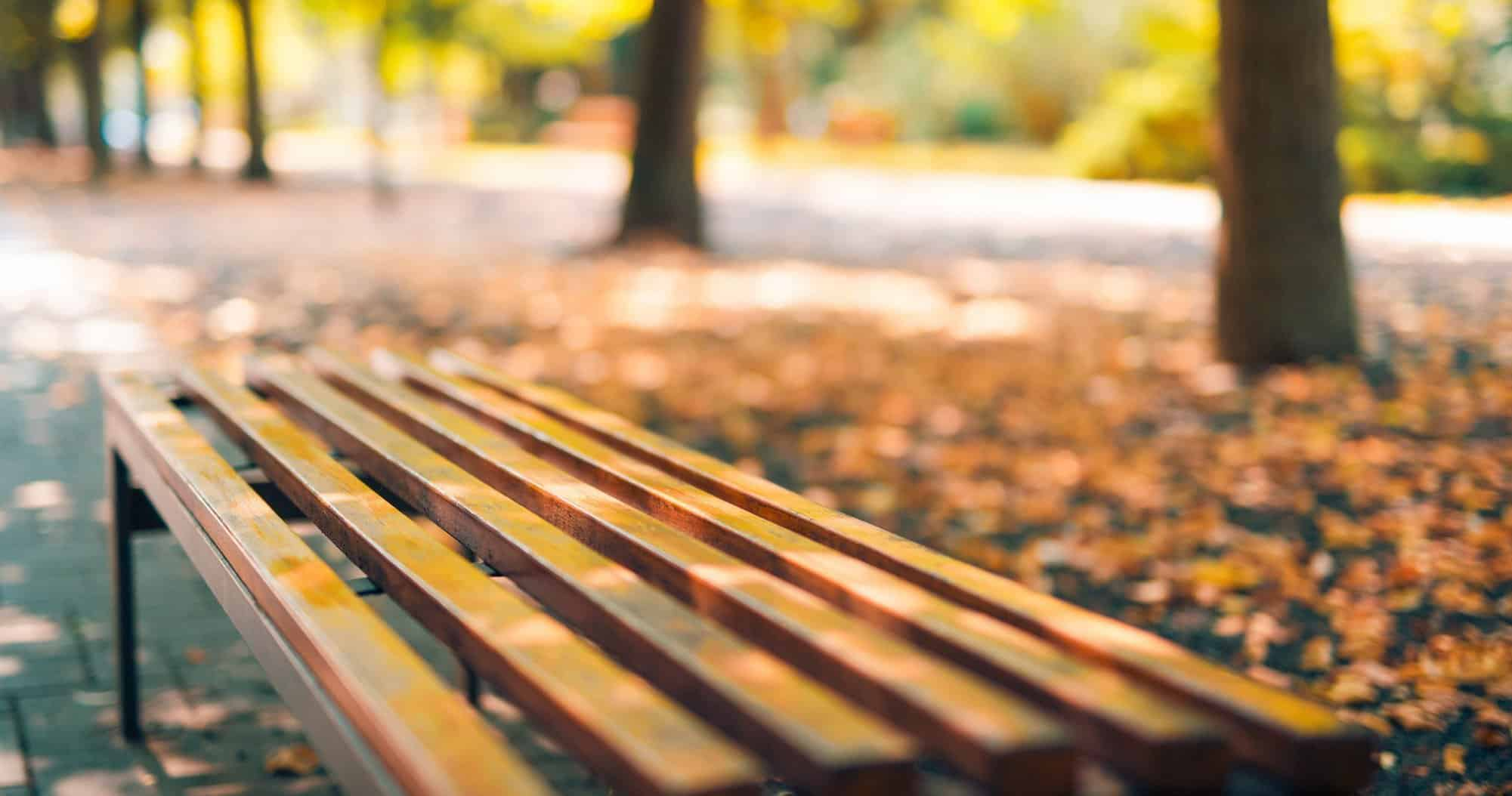 This is a picture of an Empty bench in the autumnal park with blurred colorful background for an article called How to bench mark your competitors Octopus Competitive Intelligence